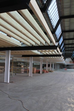 Apn Bauer Fit Out New Zealand Wood Products Limited